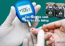 Cao Dây Thìa Canh đặc trị bệnh tiểu đường hiệu quả