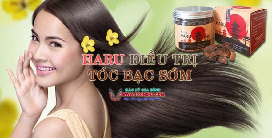 Hà thủ ô Haru điều trị bạc tóc