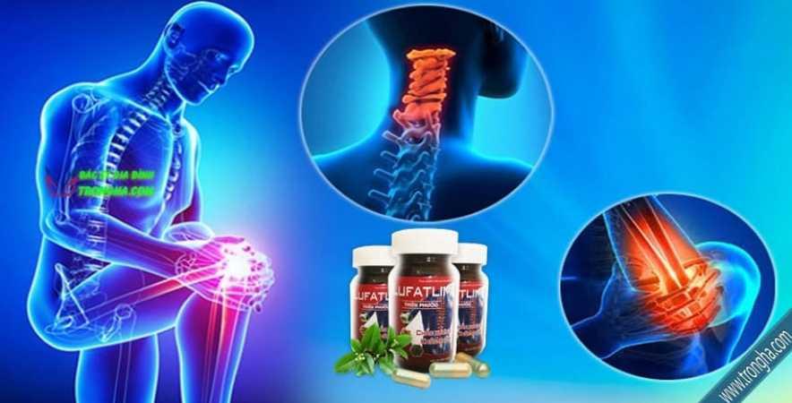 Lufatlim ngăn chặn thoái hóa khớp, tái tạo sụn khớp